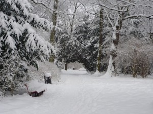 Es ist Winter in Berlin
